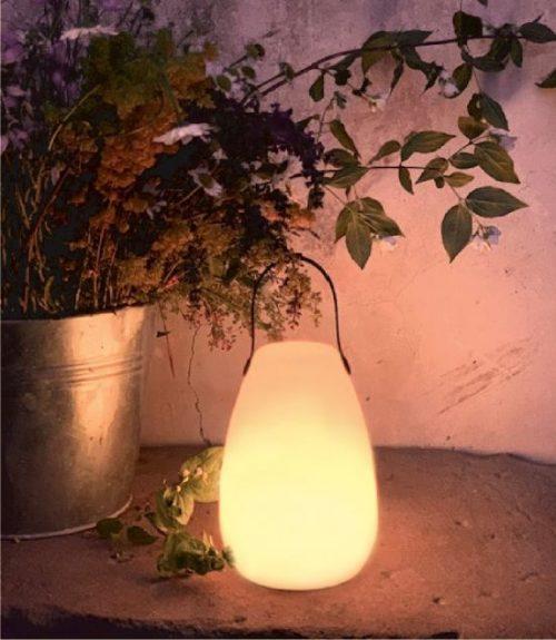 lampada led da giardino ricarica USB fiorirà un giardino